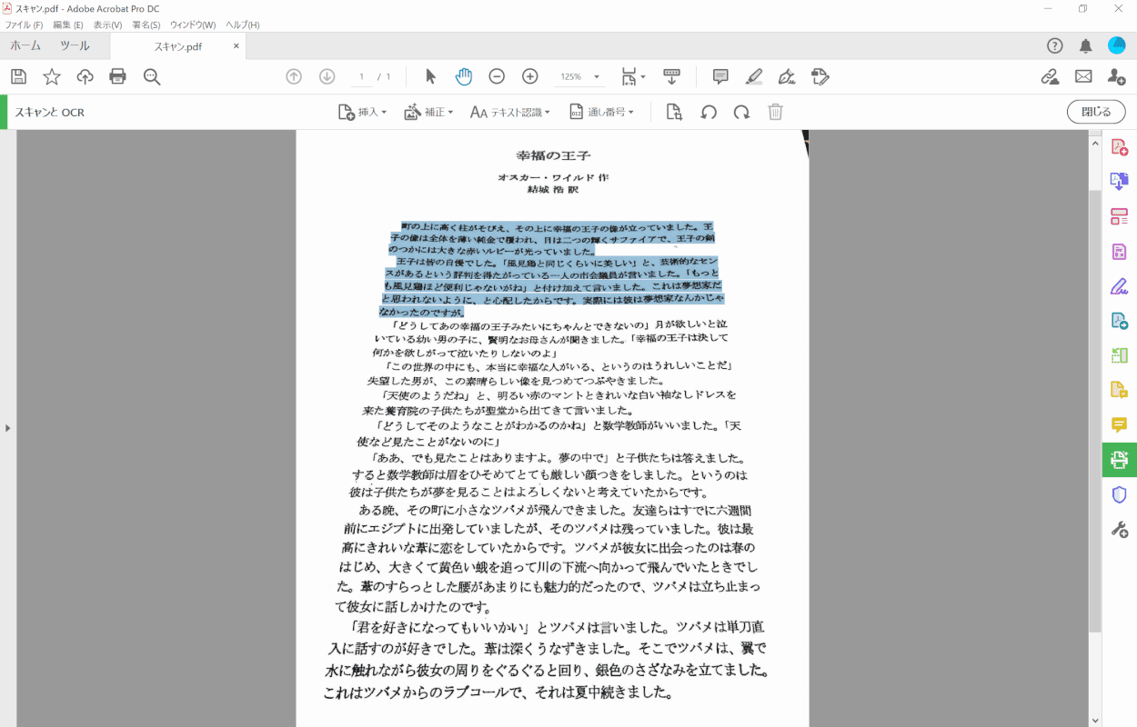 pdf-text-conversion Adobe Acrobat Pro 補正完了