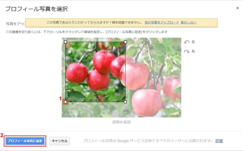 写真使用範囲