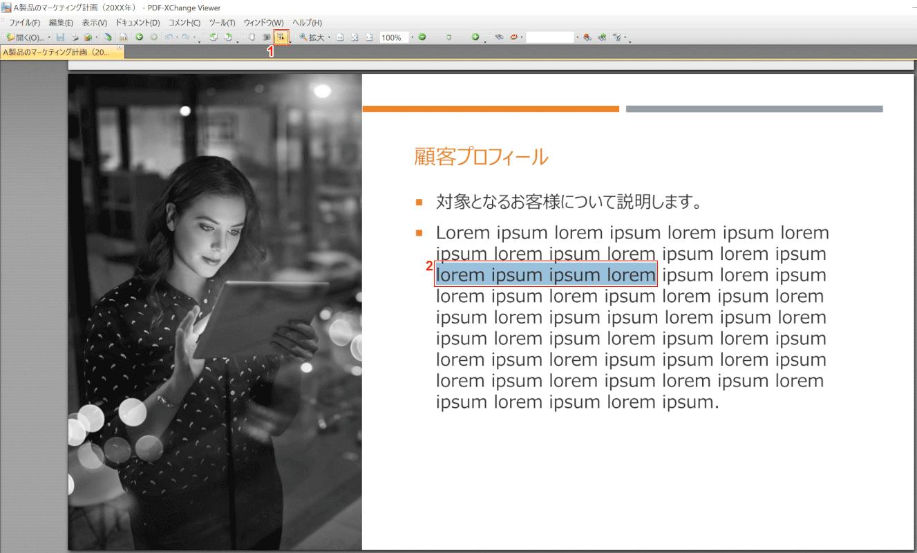 marker PDF-XChange Viewer 開く