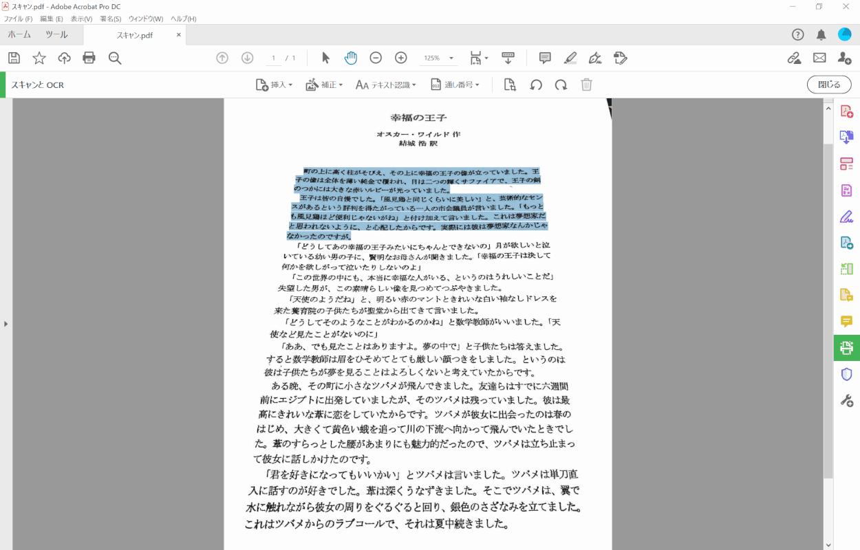 pdf-text-conversion Adobe Acrobat Pro 補正完了