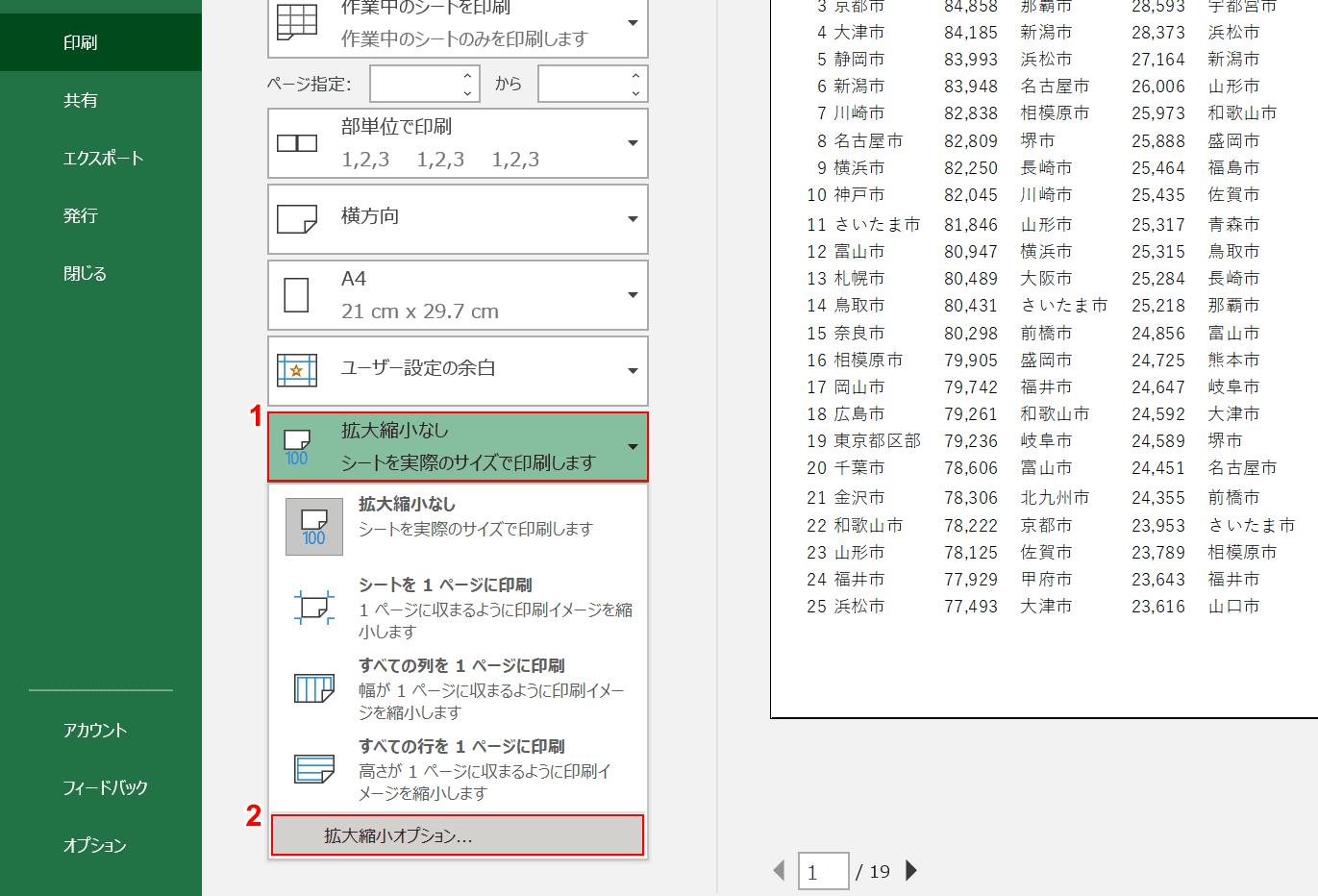 拡大/縮小オプション