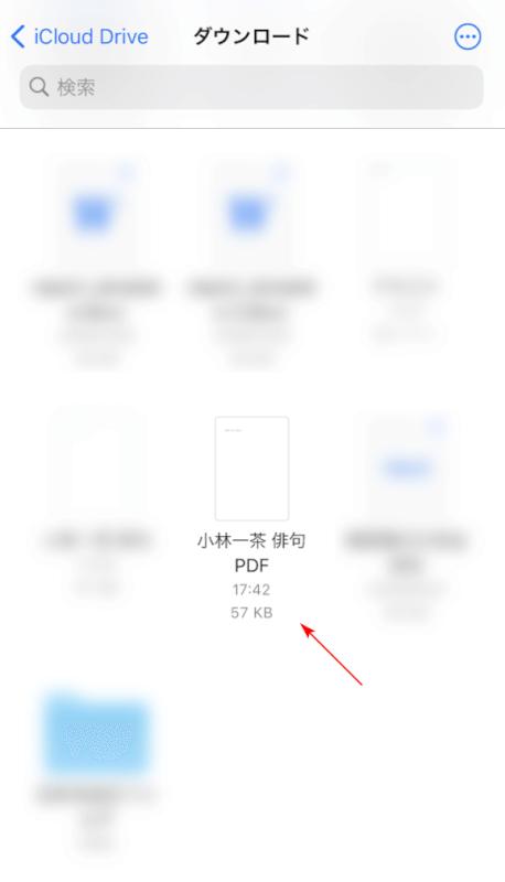 PDFの確認
