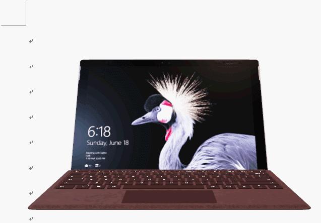 Surface Pro -バーガンディの挿入